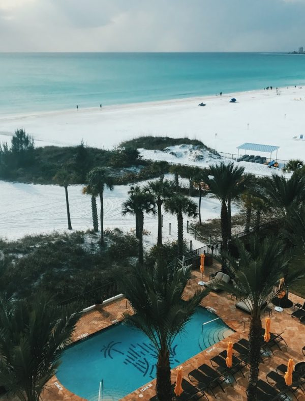 Spring Break in Sarasota, FL